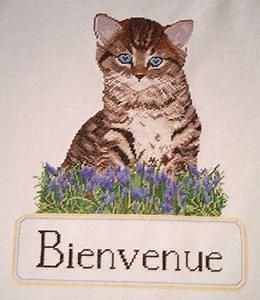 """""""Bienvenue"""" au chaton diagramme couleur .pdf"""