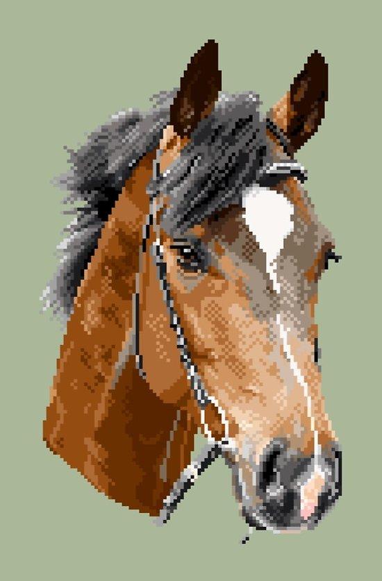 Tête de cheval diagramme noir et blanc