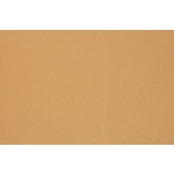 Format Raisin Kraft 50x65cm ( 30 feuilles )