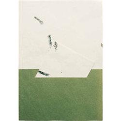 Feuille de papier artisanal A4 - ivoire avec des herbes