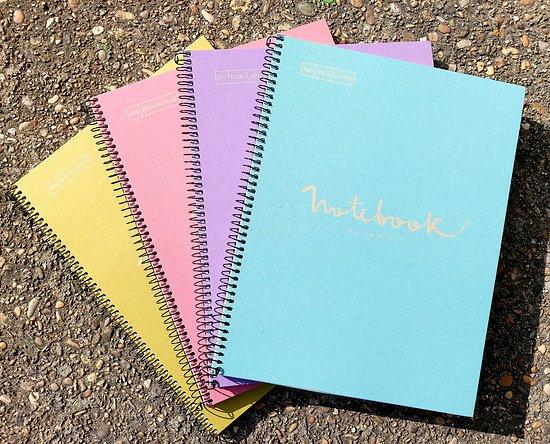 Carnet recyclé ligné  Notebook 22.7x29.7cm 160 pages blanches 80gr