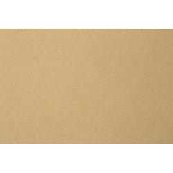 Format raisin 325 gr 50x65cm (10 feuilles)