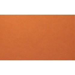 Cartes C5 22x15.5cm 175gr