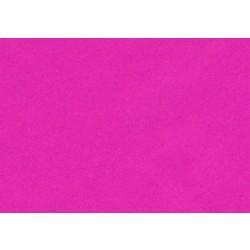 Format raisin 100gr 50x65cm (30 feuilles )