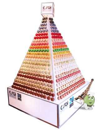 pyramide-macarons-egsi.jpg