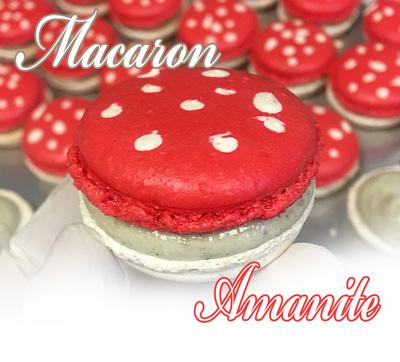 macarons-amanite400.jpg