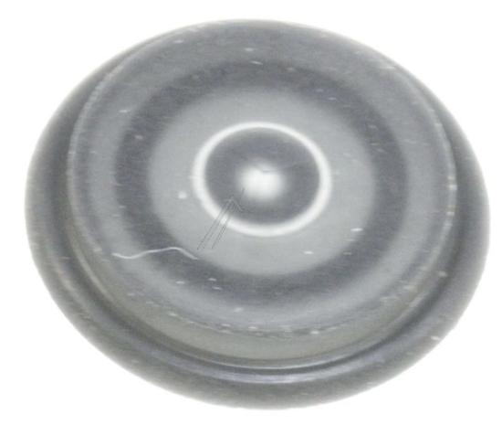 MEMBRANE (copy)