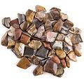 Pierre polie en bois fossilisé