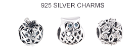 925-sterling-silver-charms-fit-pandora-bracelets.png