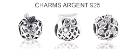 Ban-charms-argent.png