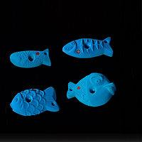 Fish Jugs 3 (Kids)