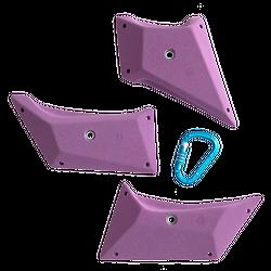 Absolute - Shields XL
