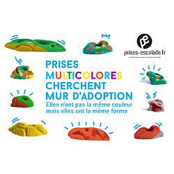 FirstLine Start 20 (pack de prises débutant) (Multicolore)