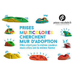 FreshLine Pockets 1 (Multicolore)