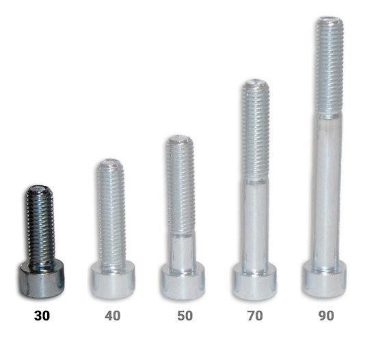Vis CHC - longueur 30 mm - pack de 100