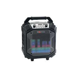 ENCEINTE BT 60W SUR BATTERIE AVEC FM/AUX/USB IPX44 AUDIOPHONY