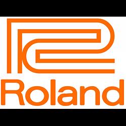 CARTE MERE POUR PIANO ROLAND RP301