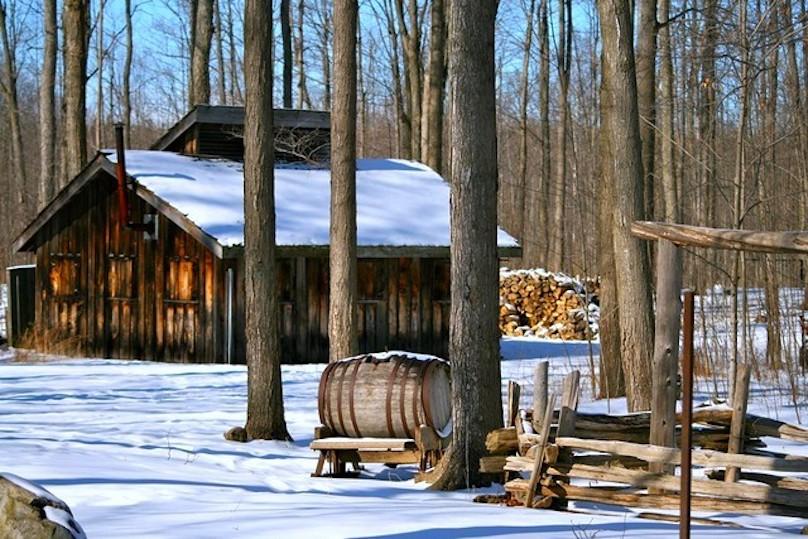 cabane-a-sucre-erabliere-neige-photo-courtoisie-DEVVS.jpg