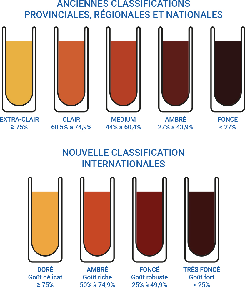 schema-des-nouvelles-classifications-du-sirop-derable.jpg