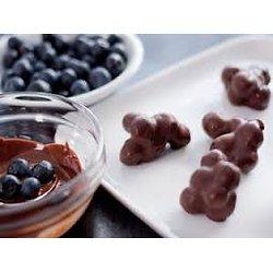 Bleuets sauvages au chocolat