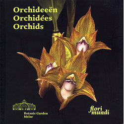 Orchideeën - Orchidées - Orchids