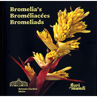 Bromelia's - Broméliacées - Bromeliads