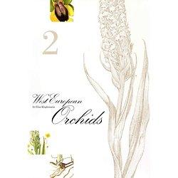 West European Orchids 2