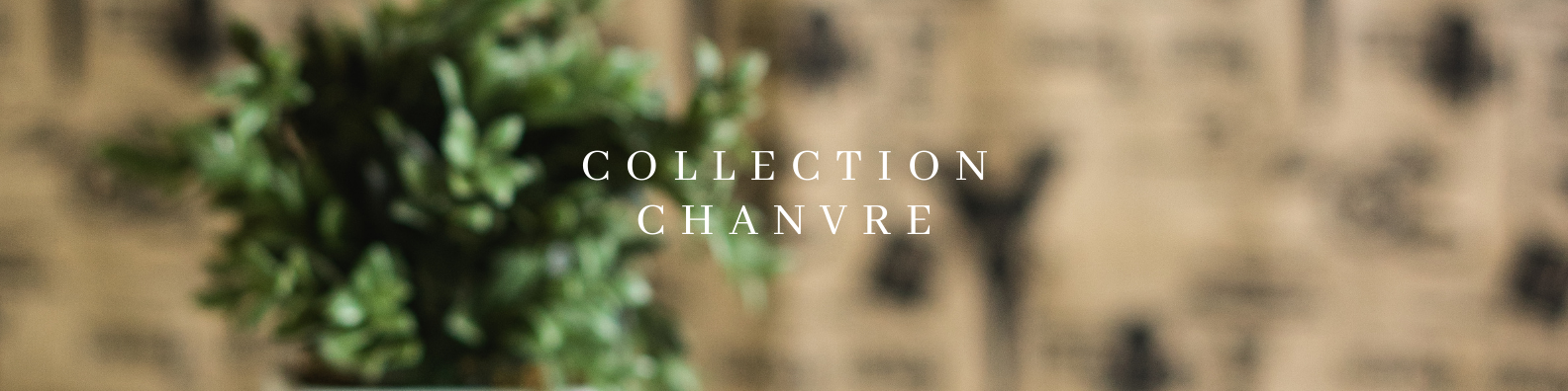 Collection_Chanvre.png