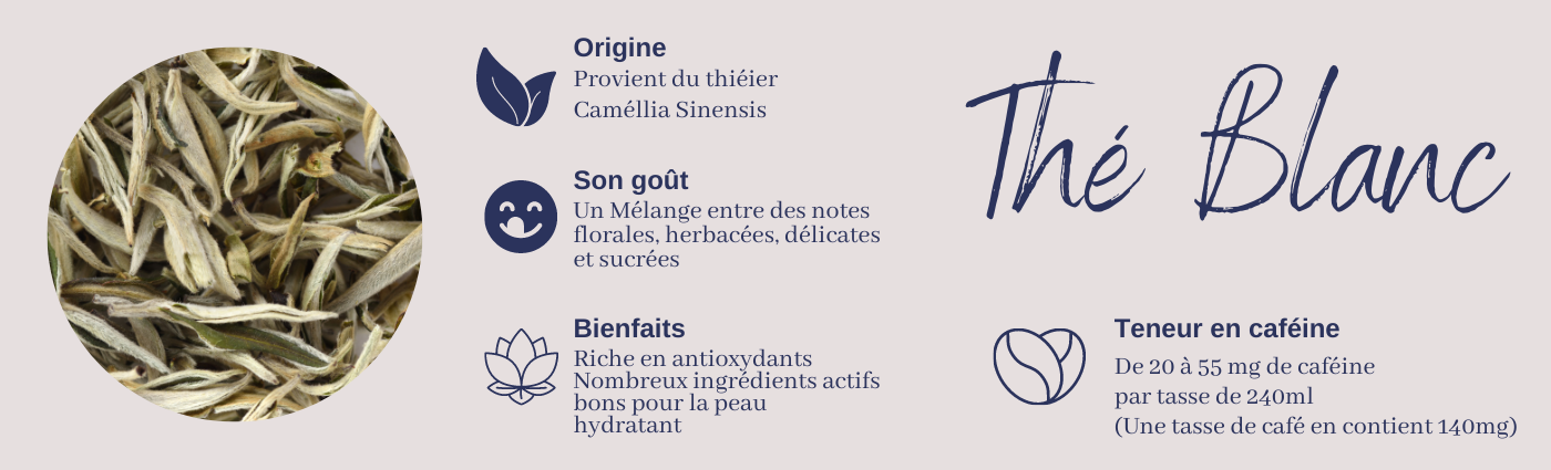 Comment_choisir_sont_The_By_teatimeStore_7.png