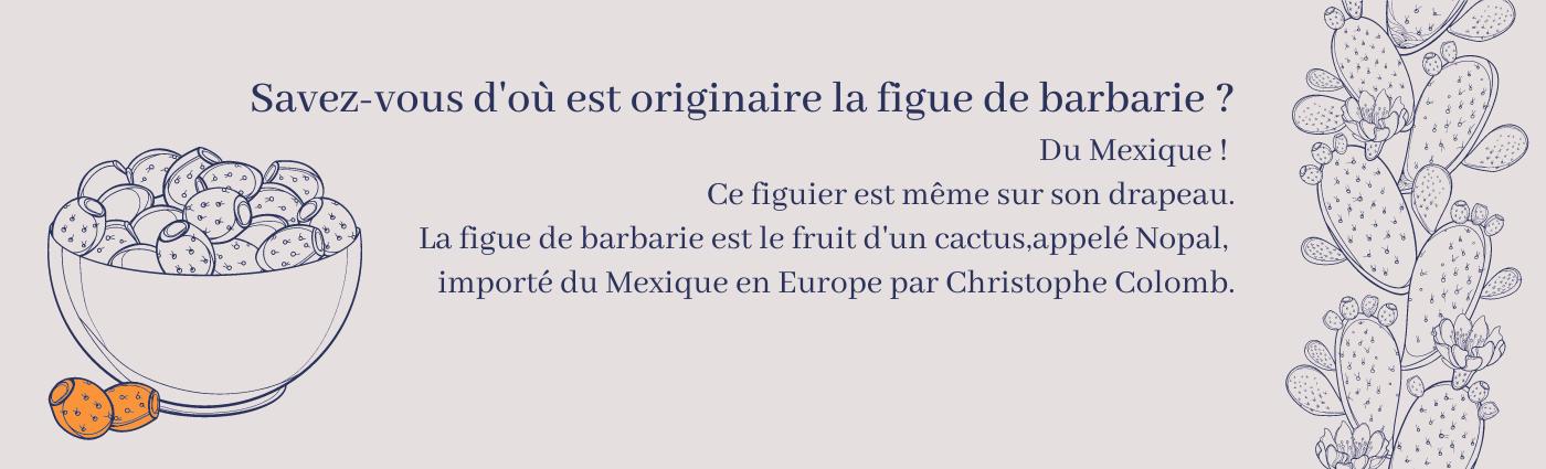 Figue_de_barbarie_1.png