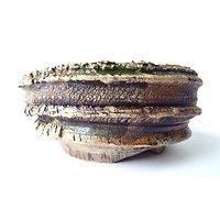 Pot pour bonsaï , cactus ou plante succulente ou caudex