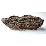 """Pot """"imitation tronc"""" pour bonsaï, cactus ou plante succulente"""