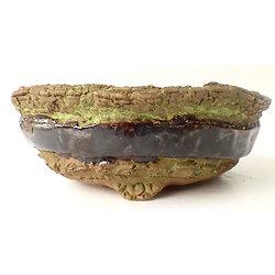 Pot rond pour bonsaï, cactus, caudex ou plante succulente