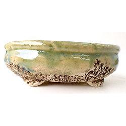 Pot oval pour bonsaï, cactus, caudex ou plante succulente