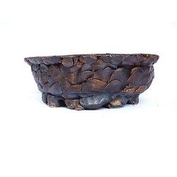 Pot pour bonsaï ,cactus ou plante succulente