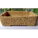 Pot pour bonsaï, ou composition de plantes succulentes et cactus