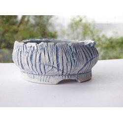 Pot en porcelaine pour bonsaï mame, kusamono, cactus ou plante succulente