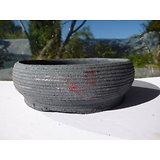 Pot rond pour bonsaï, cactus ou succulente