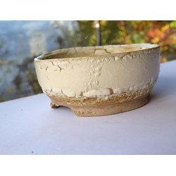 Pot pour bonsaï mame, kusamone, cactus ou plante succulente