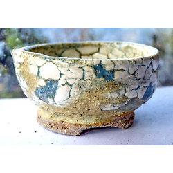 Pot pour kusamono, bonsaï mame, cactus ou plante succulente