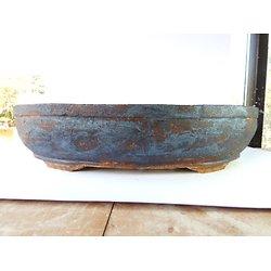 Trés grand pot ovale pour bonsaï, ou composition de cactus ou de plantes succulentes