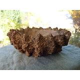 Pot rustique en grès pour bonsaï, cactus ou plante succulente