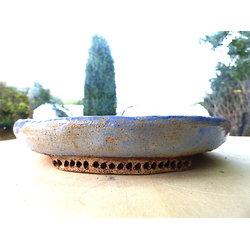 Pot rond plat pour bonsaï, ou composition de cactus ou sempervirum par exemple
