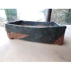 Pot rectangulaire pour bonsaï, ou composition de plantes