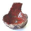 Pot coquille (crescent pot) pour bonsaïs semi cascade ou plante retombante