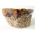 Pot ovale pour bonsaï mame ou shohin, cactus ou plante succulente