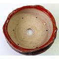 Pot pour composition pour bonsaï, cactus ou plante succulente