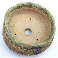 Pot craquelé pour bonsaï, caudex, cactus ou plante succulente