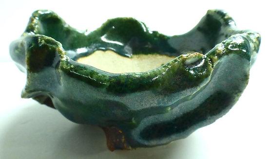 Pot pour bonsaï shohin, cactus ou plante succulente