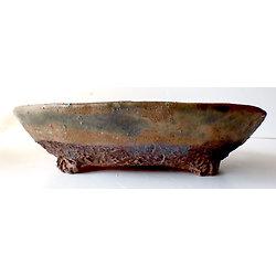 Pot ovale pour bonsaï, cactus ou plante succulente ou autre